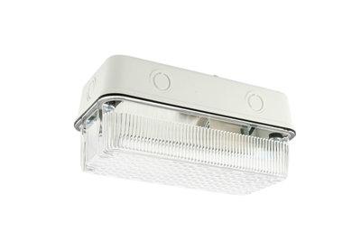 Buitenwandlamp / Portiekarmatuur Slagvast, Wit, Waterdicht IP44, E27 Fittting