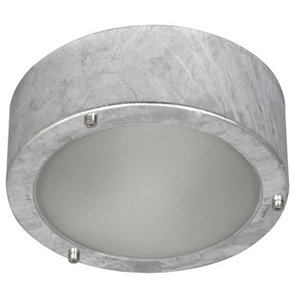 LED Plafond-/ Wandlamp voor Buiten, Geborsteld Staal