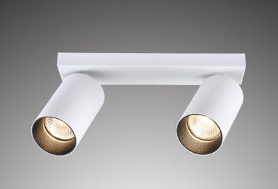 Plafondspot Rond, 2-Lichts, Kantelbaar, GU10 Fitting, Wit / Zwart